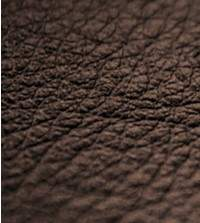 Camel Leather Sample